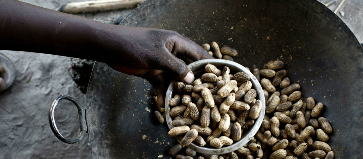 Seeds, tools and a watering can Fighting the food crisis in South Sudan